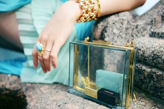 Transparent clutch 2